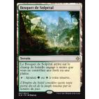 Bosquet de Solpétal / Sunpetal Grove