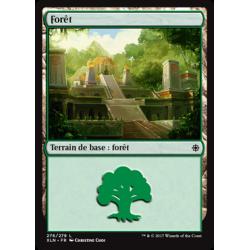 Forêt / Forest n°276