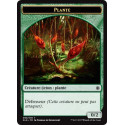 Plante 0/2