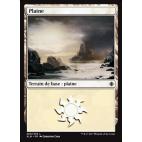 Plaine / Plains n°260