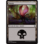 Marais / Swamp n°271
