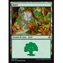 Forêt / Forest n°278 - Foil