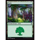 Forêt / Forest n°279