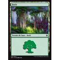 Forêt / Forest n°279 - Foil