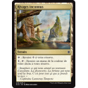 Rivages inconnus / Unknown Shores - Foil
