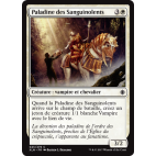 Paladine des Sanguinolents / Paladin of the Bloodstained