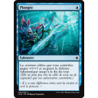 Plongée / Dive Down