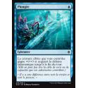 Plongée / Dive Down - Foil