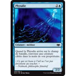 Physalie