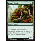 Dryade florale / Blossom Dryad