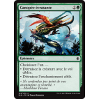 Canopée écrasante / Crushing Canopy