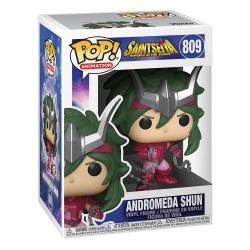 809 Andromeda Shun