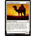 Dromadaire solitaire / Solitary Camel - Foil