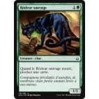 Rôdeur sauvage / Feral Prowler