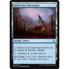 Désert du Clairvoyant / Desert of the Mindful