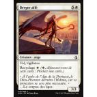 Berger ailé / Winged Shepherd