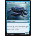 Crabe ancien / Ancient Crab
