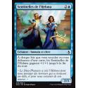 Sentinelles de l'Hekma / Hekma Sentinels
