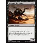 Scarabée des dunes / Dune Beetle