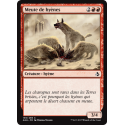 Meute de hyènes / Hyena Pack