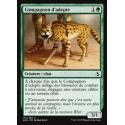 Compagnon d'adepte / Initiate's Companion