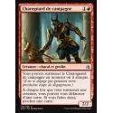 Charognard de campagne / Battlefield Scavenger