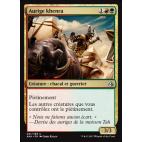 Aurige khenra / Khenra Charioteer