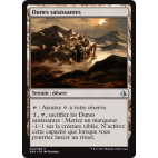 Dunes saisissantes / Grasping Dunes