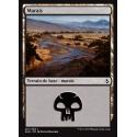 Marais / Swamp n°261