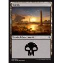 Marais / Swamp n°262
