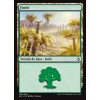 Forêt / Forest n°269