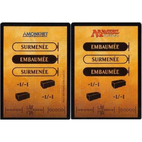Carte perforée / Punch Card