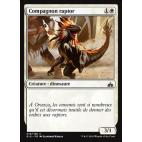 Compagnon raptor / Raptor Companion