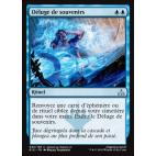 Déluge de souvenirs / Flood of Recollection