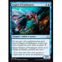 Expert d'Ouidargent / Silvergill Adept