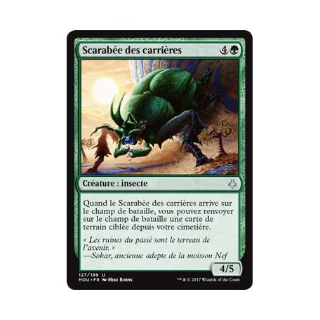 Scarabée des carrières / Quarry Beetle