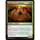 Araignée des obélisques / Obelisk Spider
