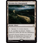 Terrains des charognards / Scavenger Grounds