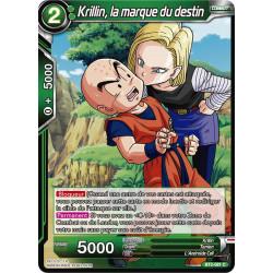 BT2-081 Krillin, la marque du destin