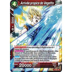 P-021 Arrivée propice de Vegetto