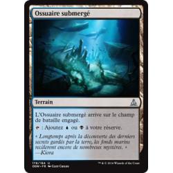 Ossuaire submergé / Submerged Boneyard
