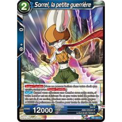 TB1-044 C Sorrel, la petite guerrière