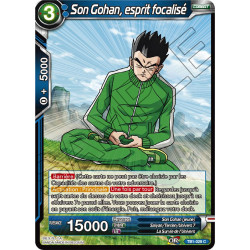 TB1-029 C Son Gohan, esprit focalisé