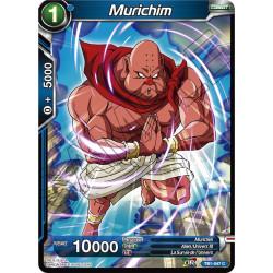 TB1-047 C Murichim