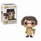 55 Harry Potter Herbologie