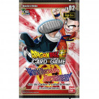 Booster Theme Boosters 2 - World Martial Arts Tournament
