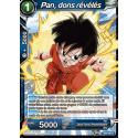 TB2-024 R Pan, dons révélés