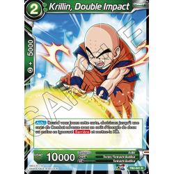 TB2-041 R Krillin, double impact