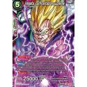 TB2-005 SR Vegeta, confrontation suprême