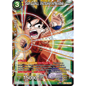 TB2-051 Son Goku, victoire inflexible